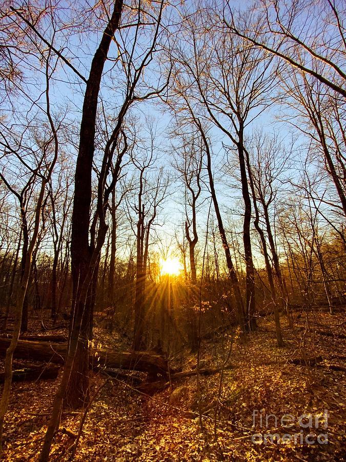 Cuyahoga Valley National Park Sunrays Photograph