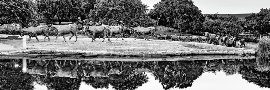 Dallas Texas Longhorn Cattle Drive Sculptures Panorama Black And White Photograph By Gregory Ballos