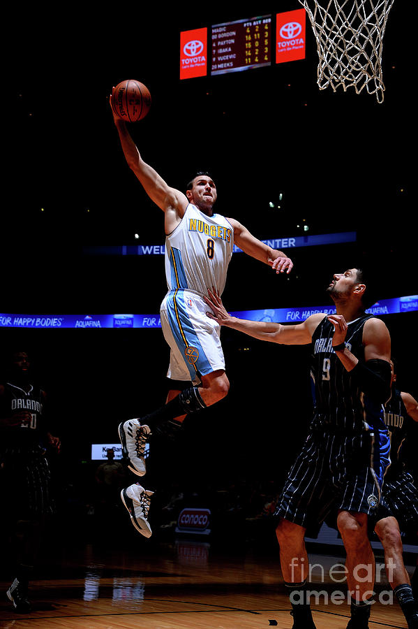 Danilo Gallinari Photograph by Bart Young