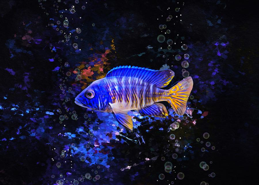 Dark Blue Redsun Peacock Cichlid Digital Art