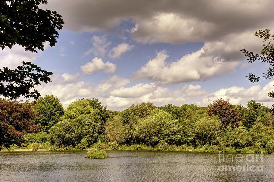 Dark Clouds Over Alkington Woods, Manchester, England Photograph