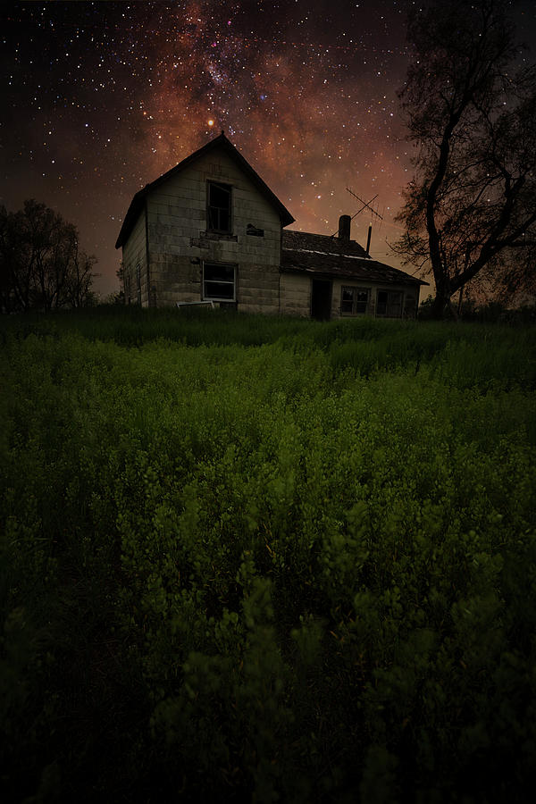 Dark Places Photograph - Dark Roots of Earth by Aaron J Groen