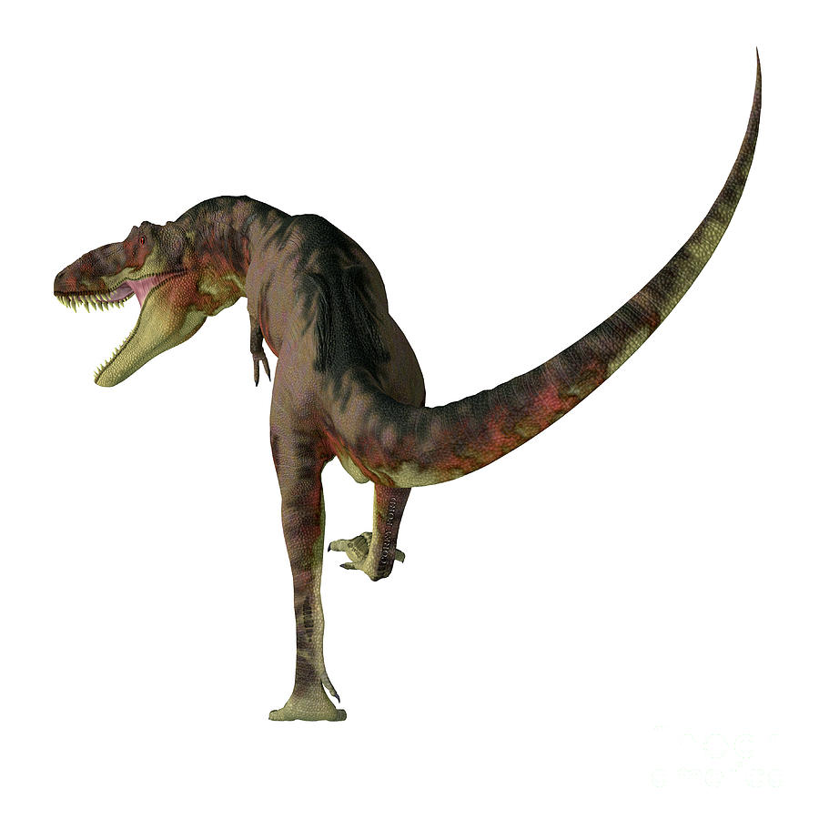 Daspletosaurus Dinosaur Carnivore Digital Art