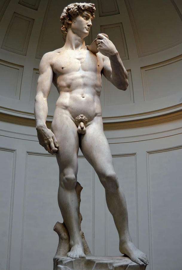 David by Michelangelo in Florence Italy by Shawn O'Brien