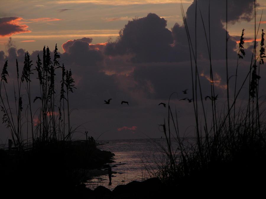 Dawn Cloud Cover Photograph by Julianne Felton