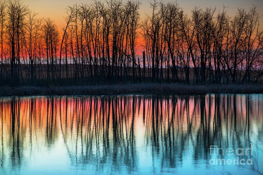Canada Photograph - Dawn Reflections II by Ian McGregor