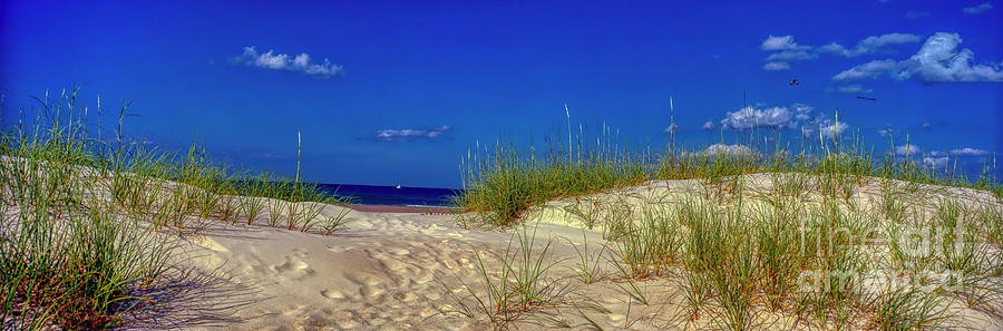 Daytona Beach Sand dunes and distant sail boat  by Tom Jelen