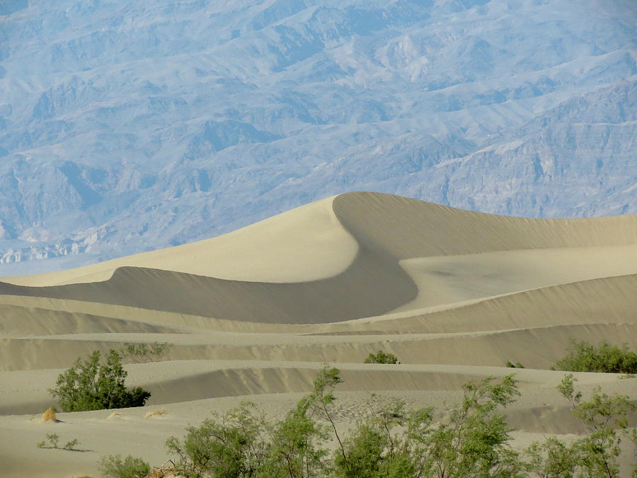Death Valley Sand Dunes by Patti Deters