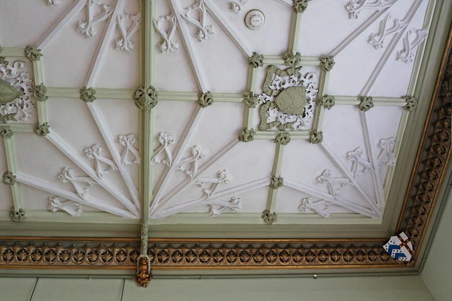 Decorated Ceiling Photograph