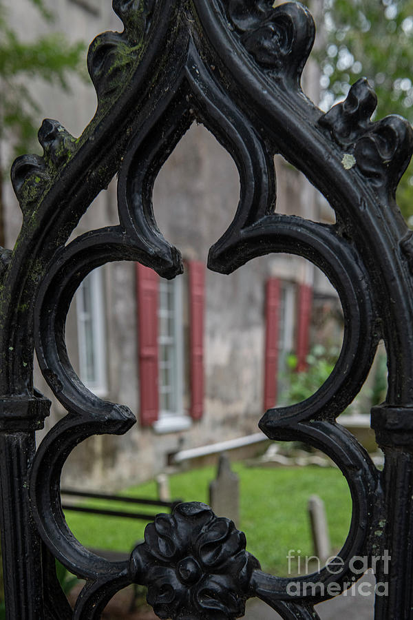Decorative Iron View - Historic Downtown Charleston Photograph