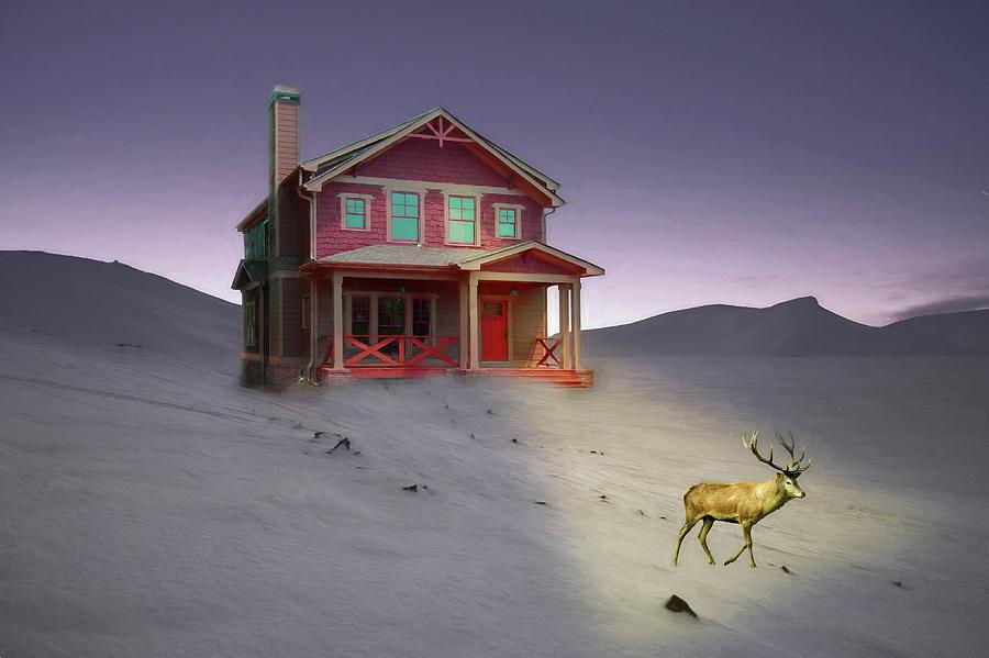 Deer in Front Yard II by Alison Frank