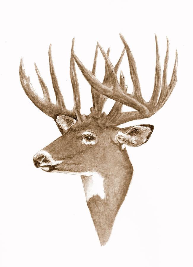 Deer Portrait Painting