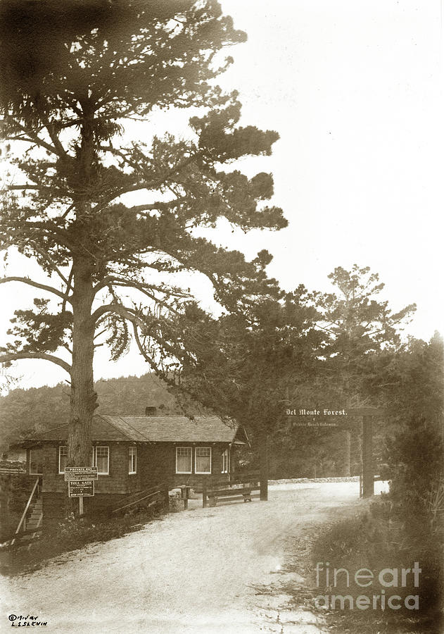 Del Monte ForestToll Gate of Del Monte Forest Pebble Beach Gate by California Views Archives Mr Pat Hathaway Archives