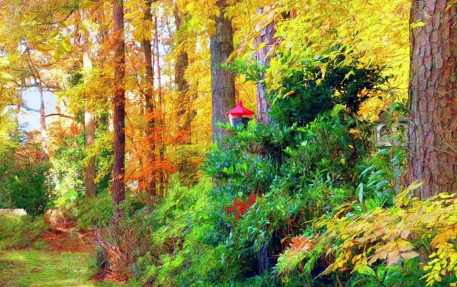 Delightful Autumn Photograph
