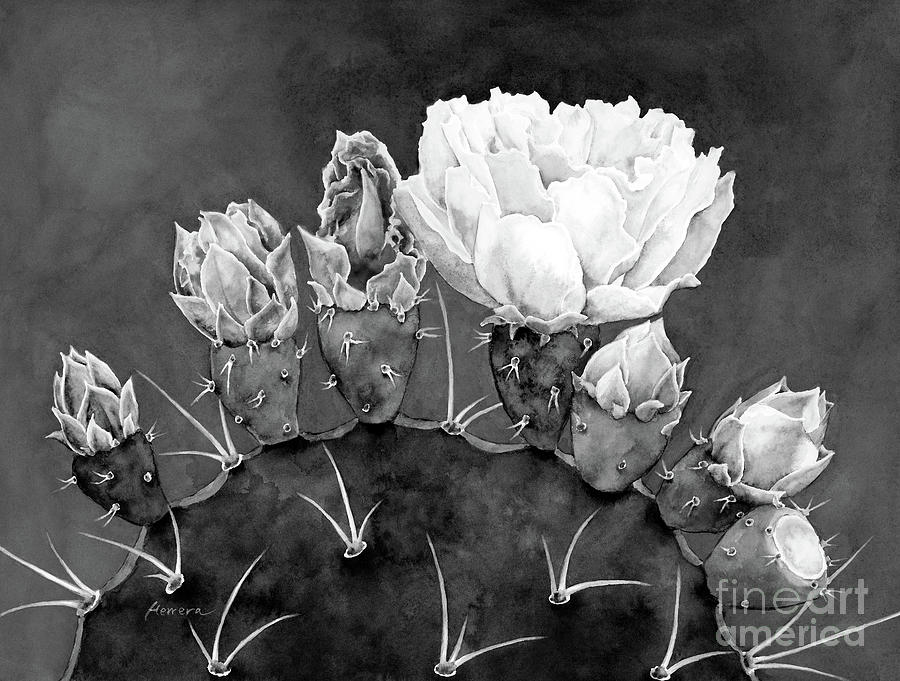 Desert Bloom 3 In Black And White Painting