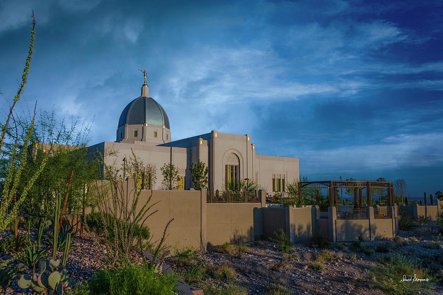Desert Color Photograph