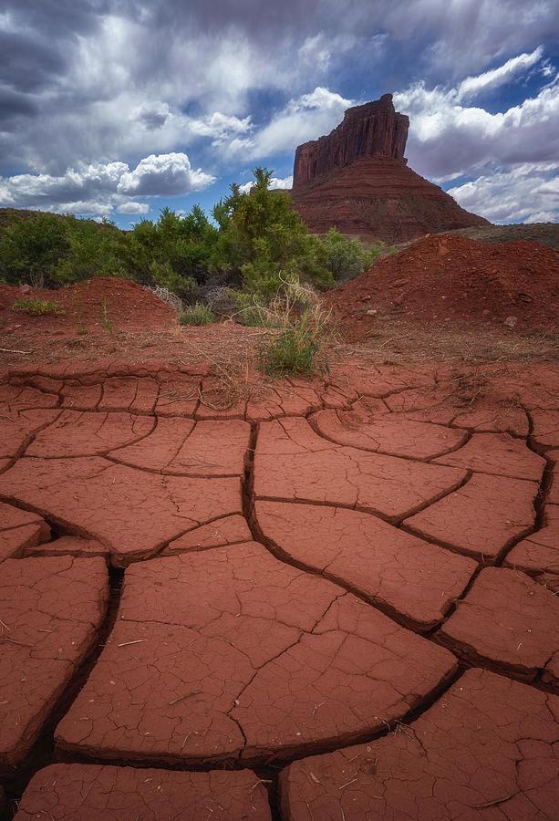 Desert Drought Photograph