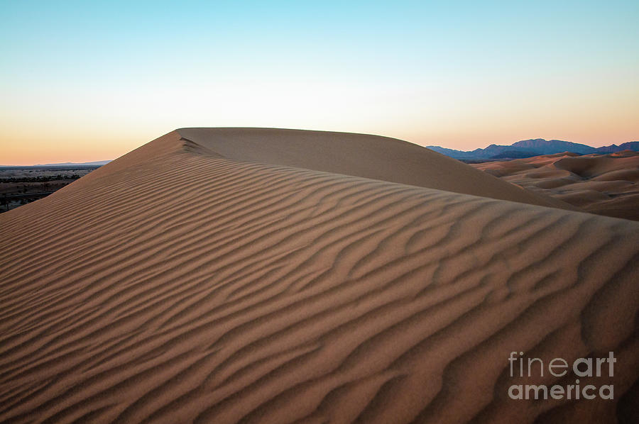 Desert Evening Photograph