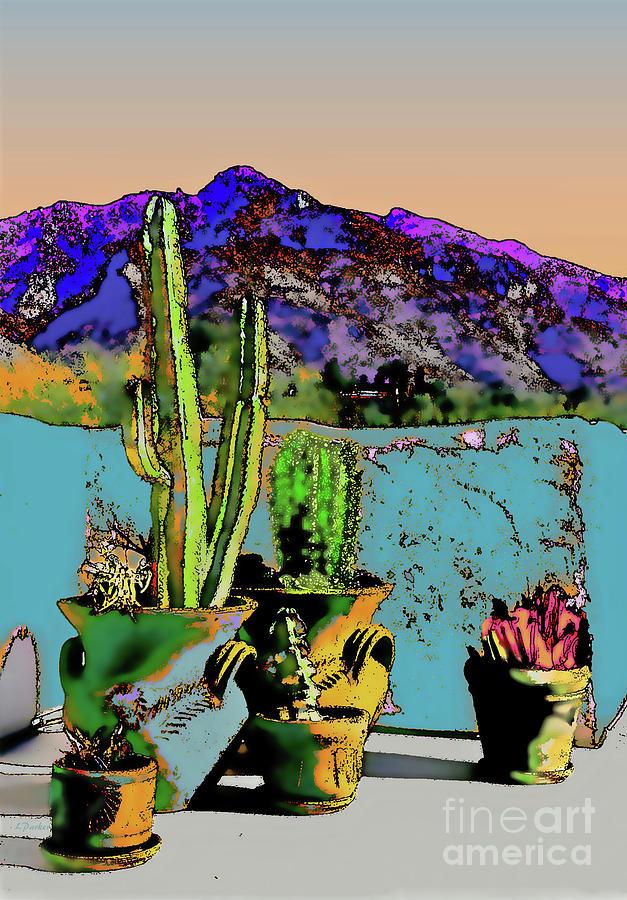 Desert Patio Pots Photograph By Linda Parker