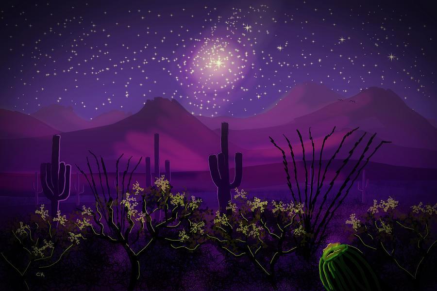Desert Stars by Chance Kafka
