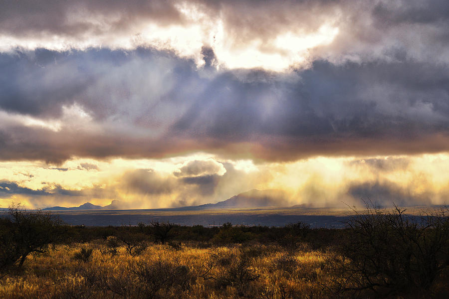 Desert Sun Rays by Chance Kafka