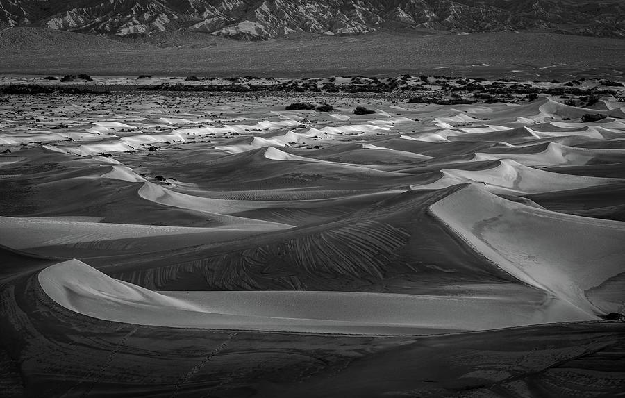 Desert Waves Photograph