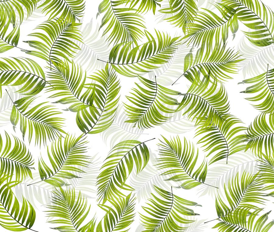 Design 150 Palm Leaves by Lucie Dumas