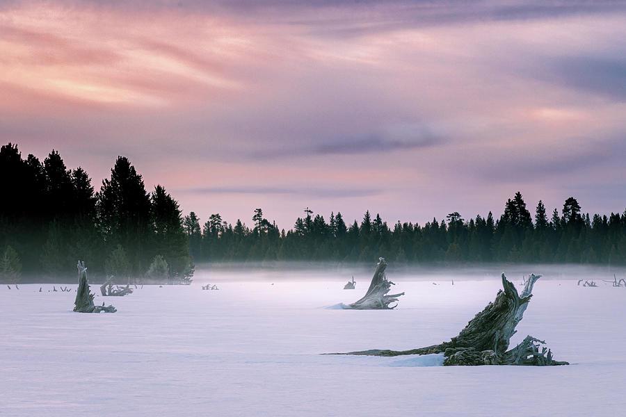 Desolate Dawn Photograph