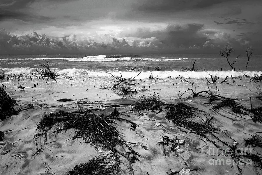 Desolation Photograph - Desolation by Felix Lai