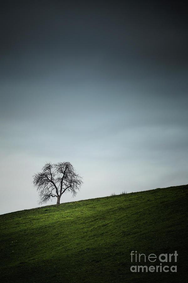 Desolation Hill Photograph