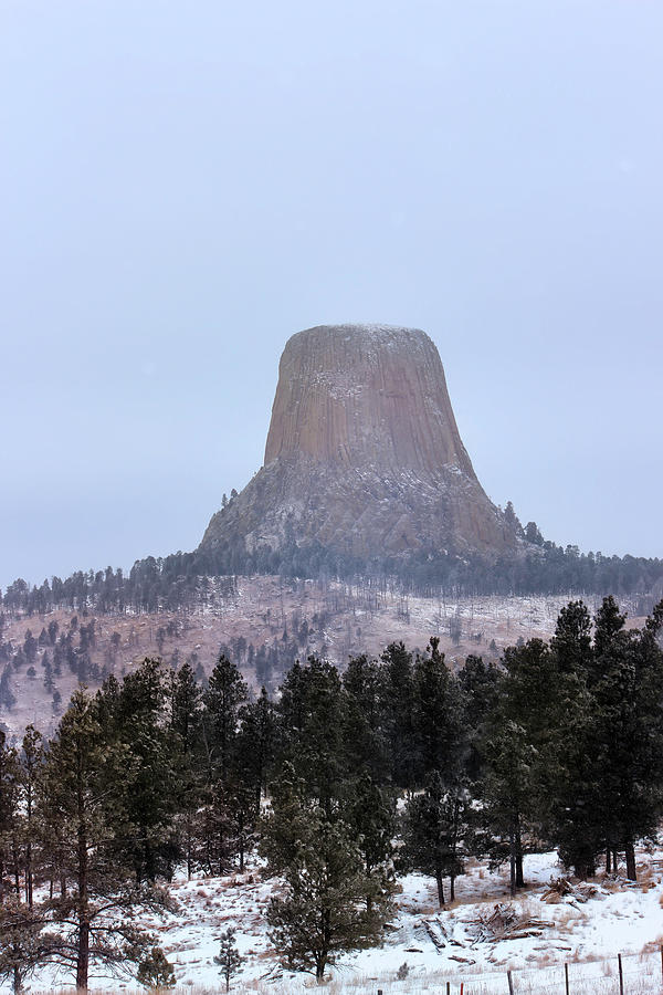 Devils Tower in December  by Cathy Anderson