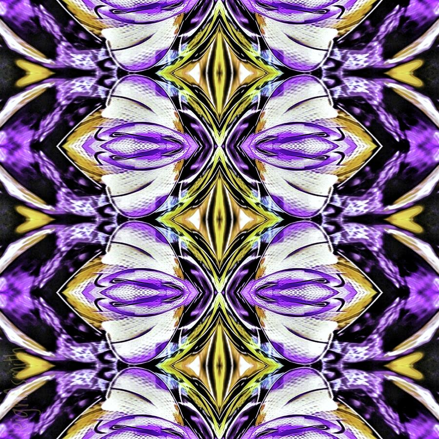 Diamond Pattern 1 Photograph