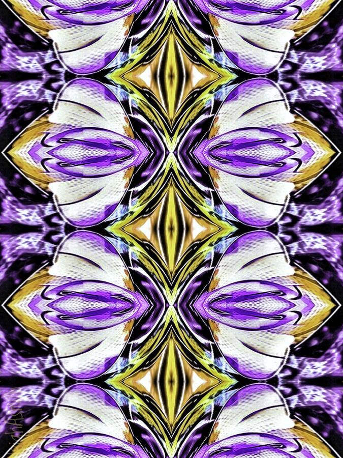 Diamond Pattern 2 Photograph