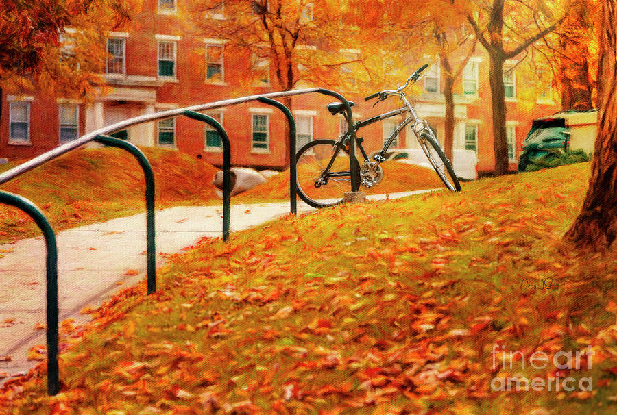 Diamondback Bicycle on Williams College Campus by Craig J Satterlee