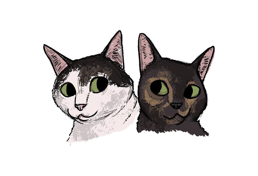 Cats Drawing - Dillon - 2 Cats by Claire DeWilde
