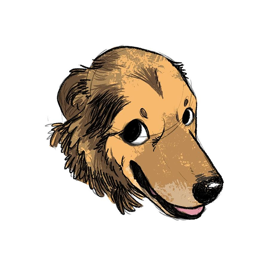 Shepherd Dog Drawing - Dillon - Shepherd Mix by Claire DeWilde