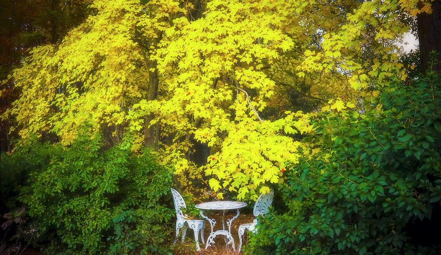 Splendor of Autumn by Ola Allen