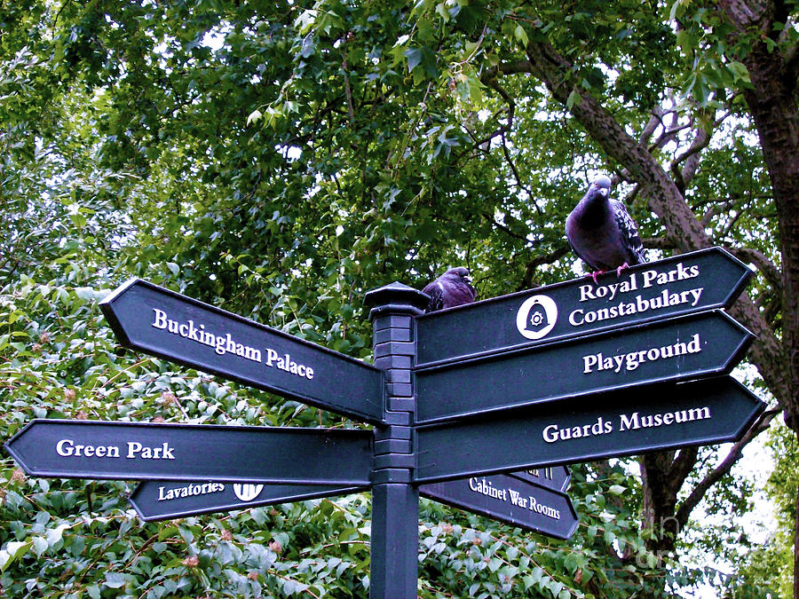 Directional Signs Photograph