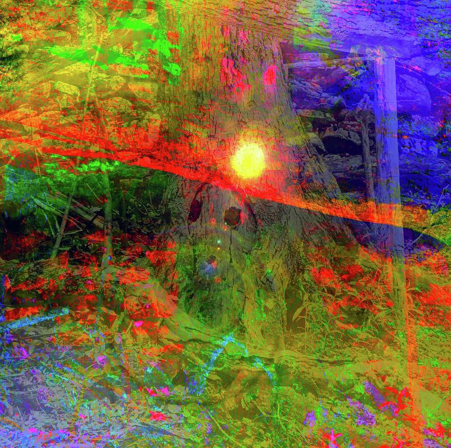 Discovering The Light Of Magic Digital Art