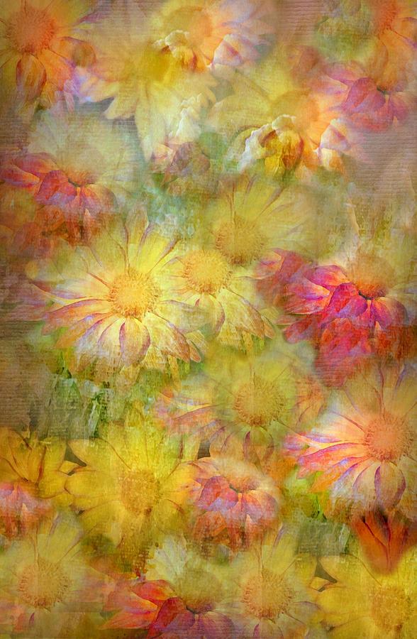 Distant Petals by Diana Angstadt