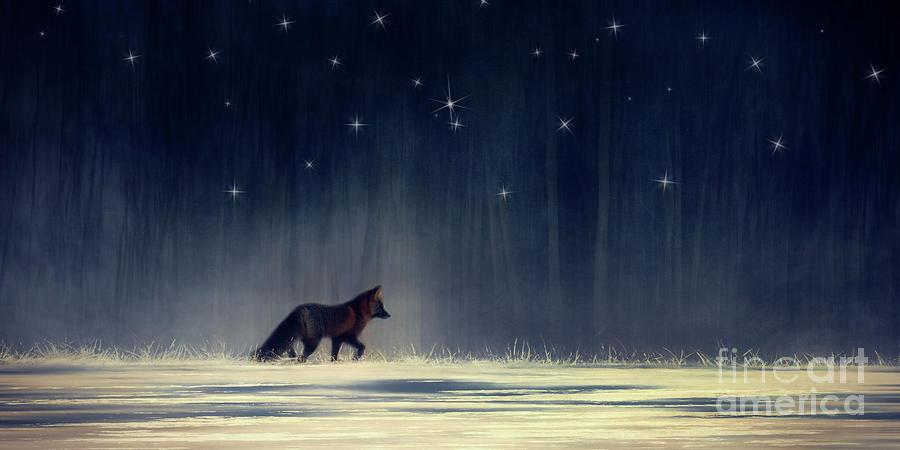 Do foxes feel lonely by Priska Wettstein