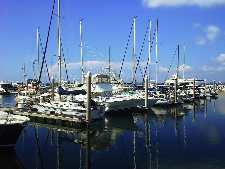 Docked Yachts Photograph