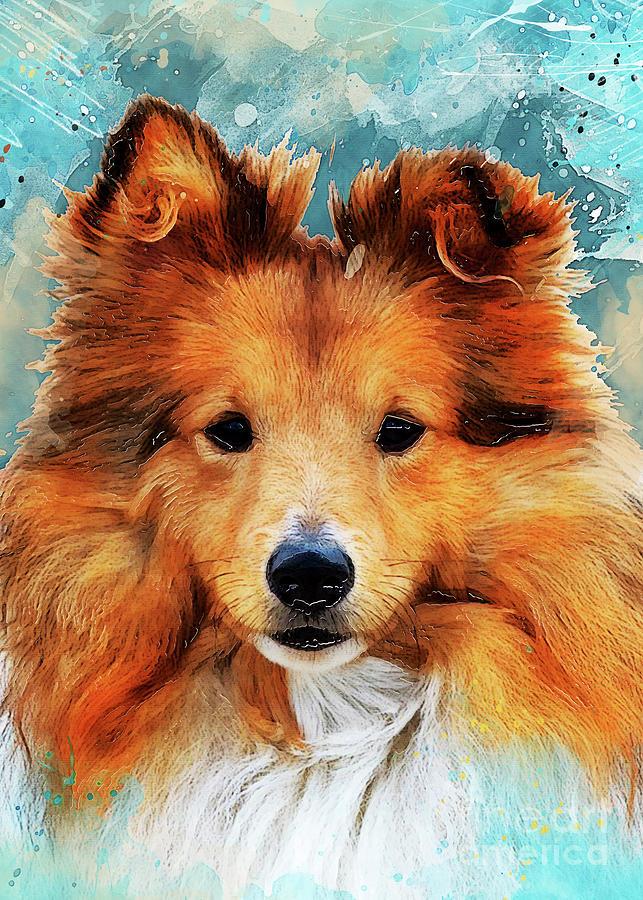 Dog Collie #dog #collie #animals Mixed Media