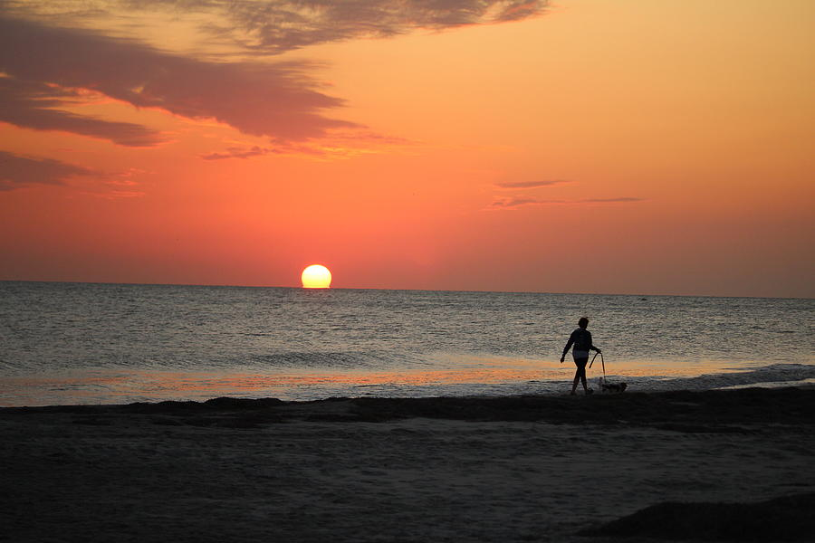 Dog Walking At Sunset by Cynthia Guinn