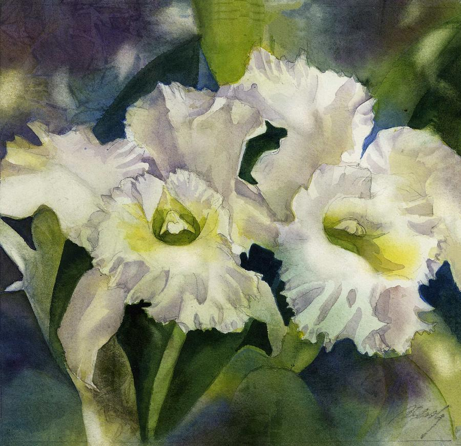 Double white cattleya orchid by Alfred Ng