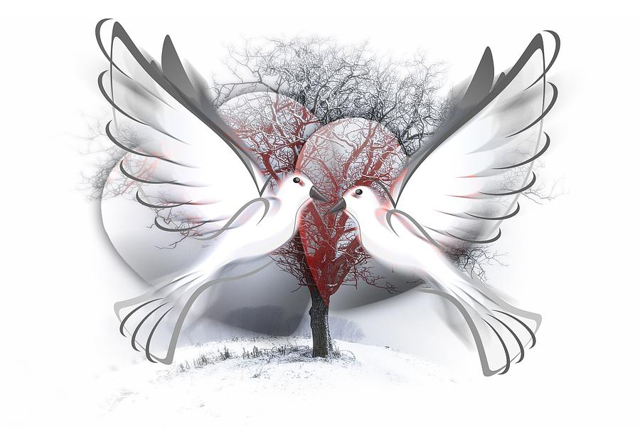 Doves In Love Mixed Media