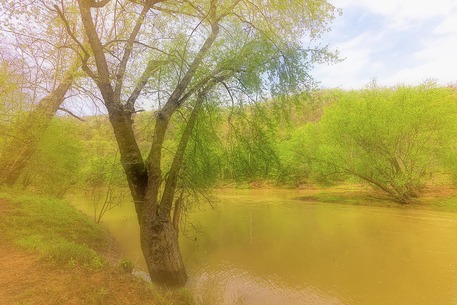 Down By The River Photograph