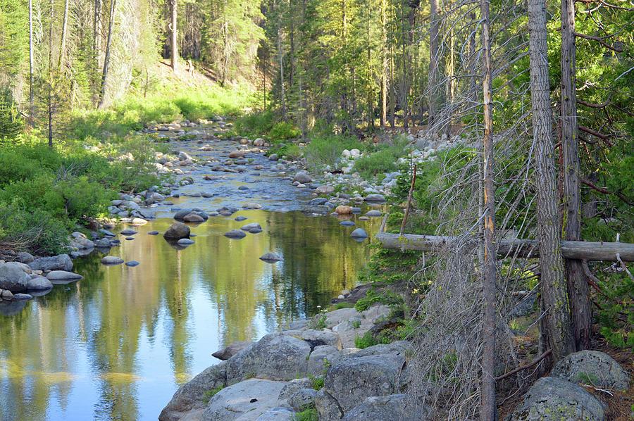 Downstream Dinkey Photograph