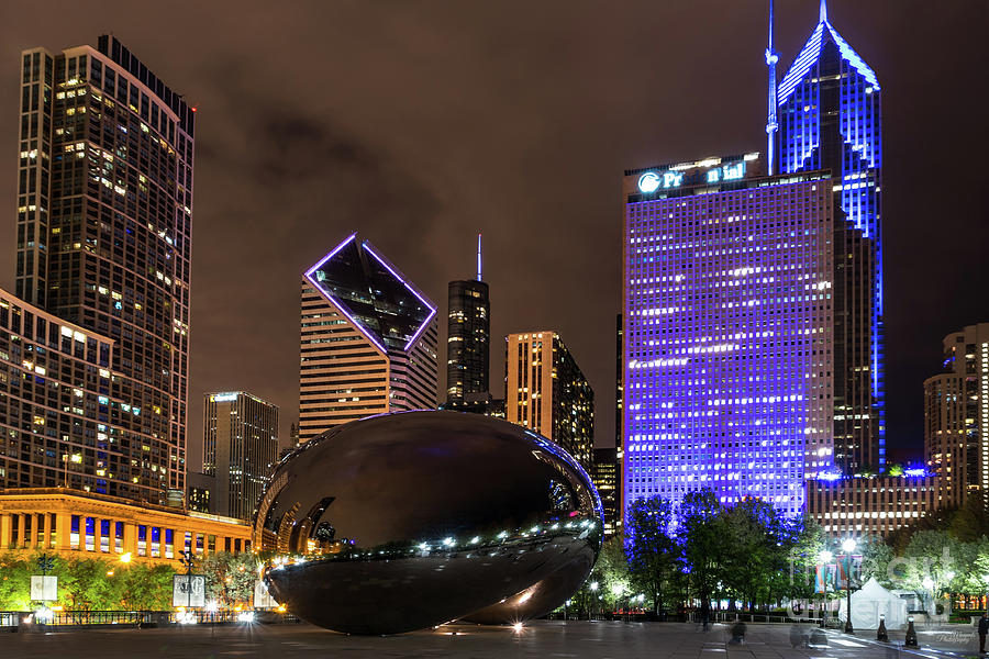 Downtown Chicago Night by Jennifer White