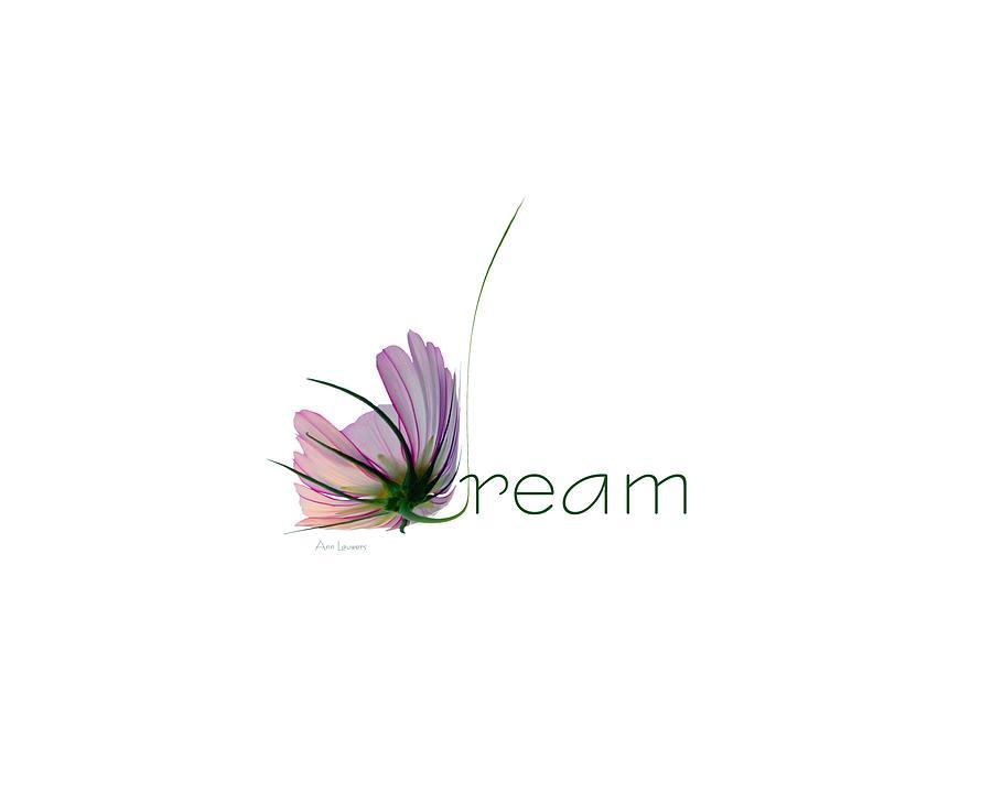 Dream by Ann Lauwers